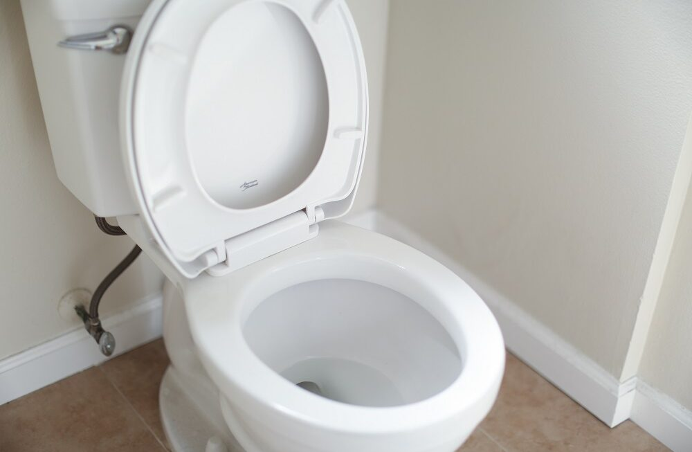 How to fix a leaking toilet flush? Causes & Solutions