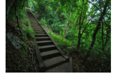 All types of Stairs in the Woods and their Structure